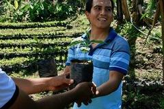 ペルー・フェスパ農園 ウィルダーガルシア  [やや深炒り]